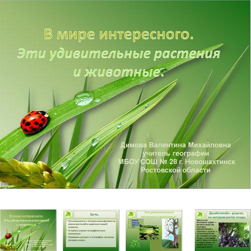 Презентация Животные и растения