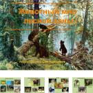 Презентация Животный мир леса