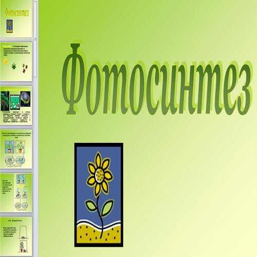 Презентация Процесс фотосинтеза