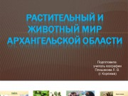 Презентация Архангельская область