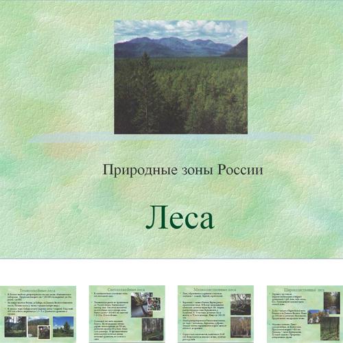Презентация Леса России