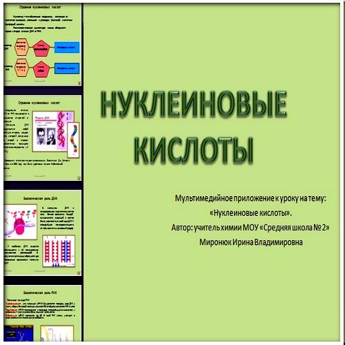 Презентация Нуклеиновые кислоты