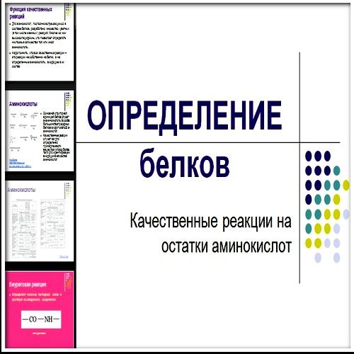 Презентация Определение белков
