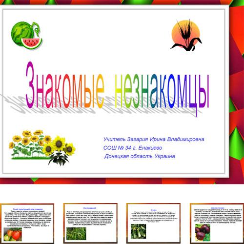 Презентация Овощи и фрукты