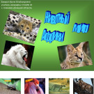 Презентация Животные Африки
