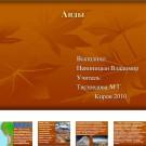 Презентация Анды