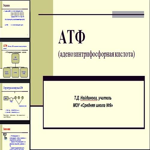 Презентация АТФ