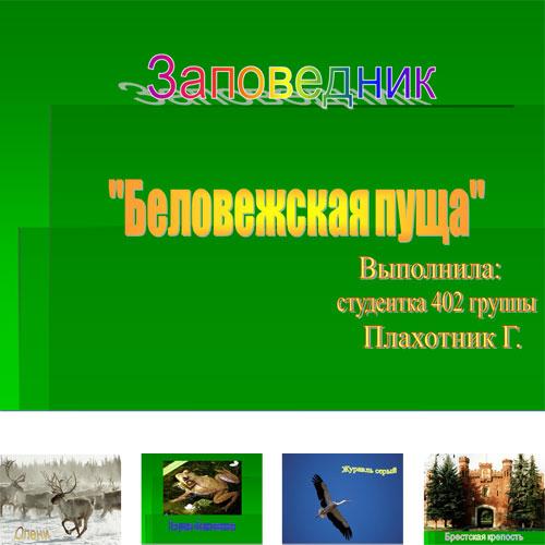 Презентация Беловежская Пуща