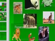 Презентация Дикие животные