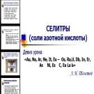 Презентация Селитры