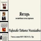 Презентация Янтарь