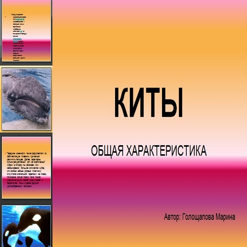 Презентация Киты