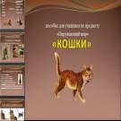 Презентация Кошки
