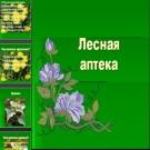 Презентация Лесная аптека