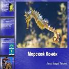 Презентация Морской конек