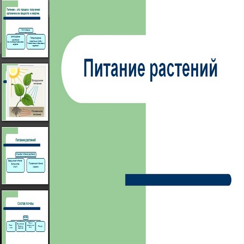 Презентация Питание растений