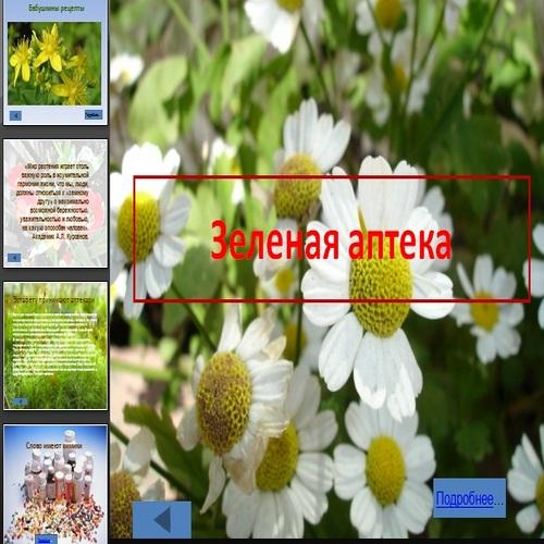 Презентация Зеленая аптека