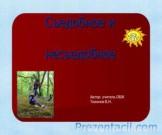 Презентация Съедобное и несъедобное