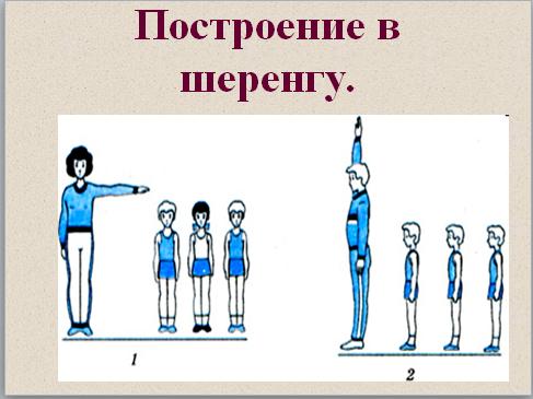 Презентация Гимнастика для начинающих