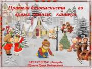 Презентация Безопасность во время зимних каникул