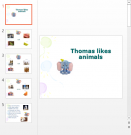 Презентация Что любят животные