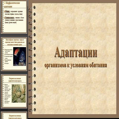 Презентация Адаптации