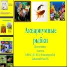 Презентация Аквариумные рыбки