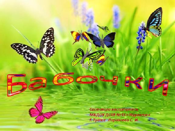 Презентация Бабочки