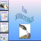 Презентация Еда животных