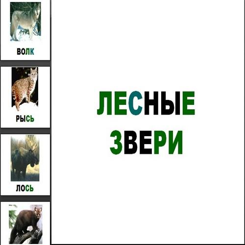 Презентация Лесные звери