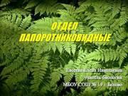 Презентация Отдел Папоротниковидные
