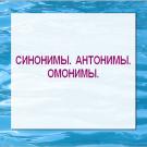 Презентация Синонимы Антонимы Омонимы