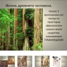 Презентация Жизнь древнего человека