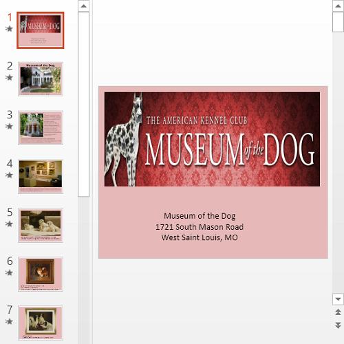 Презентация Музей собак