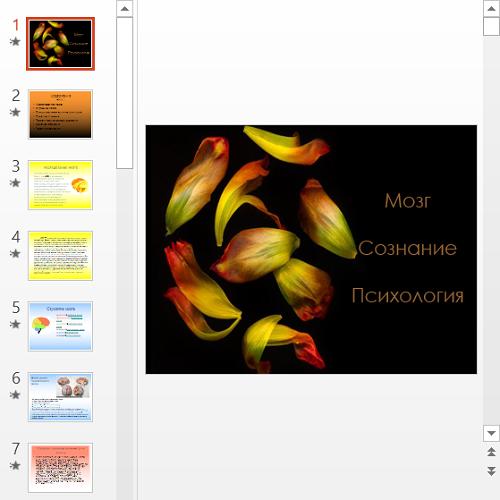 Презентация Мозг и сознание в психологии