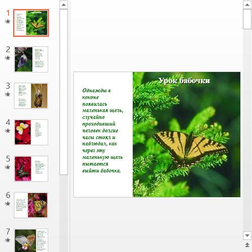 Презентация Урок бабочки