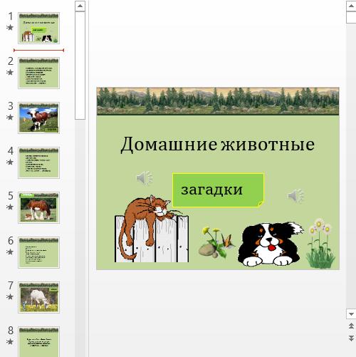 Презентация Загадки про животных