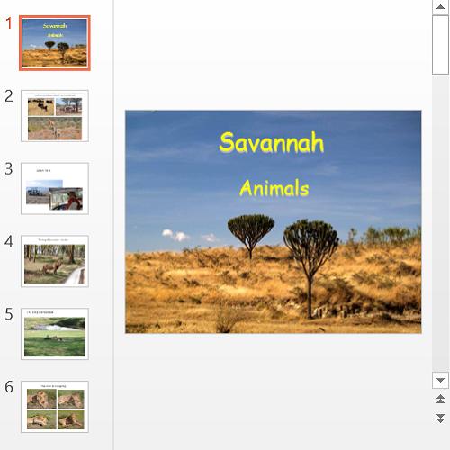 Презентация Savannah