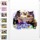 Презентация Animal planet