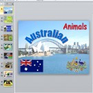 Презентация Australian animals