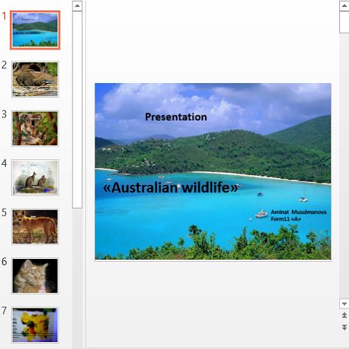 Презентация Australian wildlife