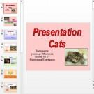 Презентация Cats