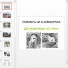 Презентация Двойственные картинки