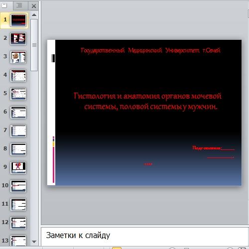 Презентация Гистология и анатомия мужской половой системы