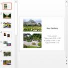 Презентация Kew gardens
