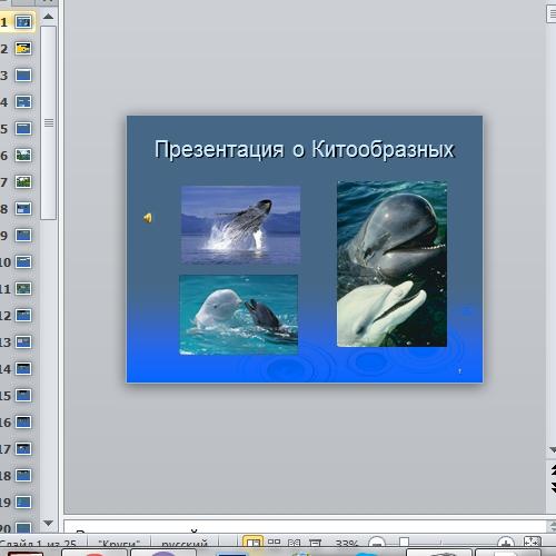 Презентация Китообразные