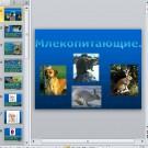 Презентация Млекопитающие