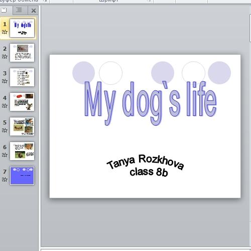 Презентация My dog's life