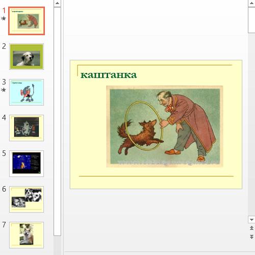 Презентация Собаки