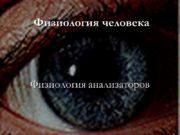 Физиология человека Физиология анализаторов Классификация Зрительный Обонятельный слуховой